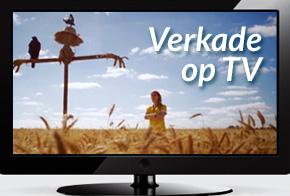 Verkade op TV